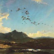 Wild ducks crossing Arran, Evening Light