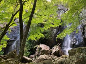 山之観音~御来迎の滝の山道整備