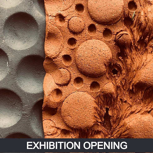 Exhibition Opening - They Paved Paradise
