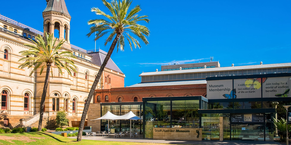 Guided Tour with lunch : SA Museum Tour - NAIDOC