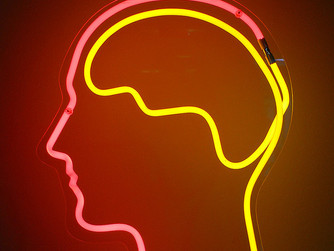 To overcome fear, start with your brain