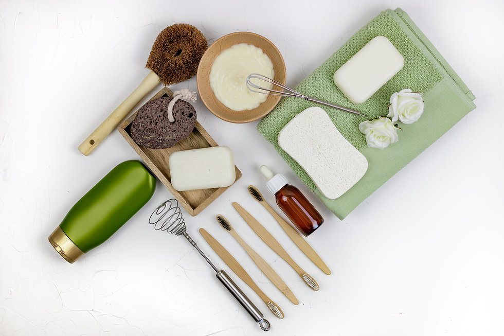 Eco-sustainable-products-574232.jpg