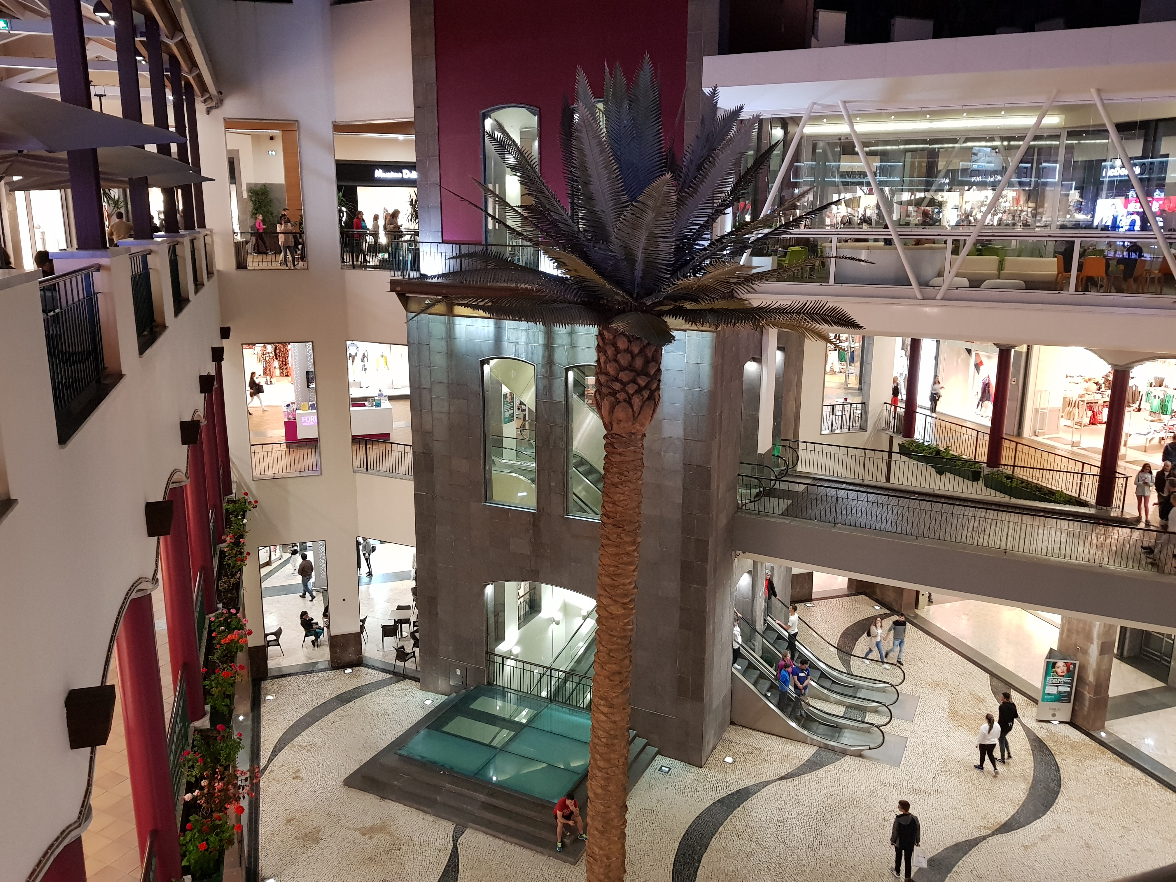 The Forum shopping