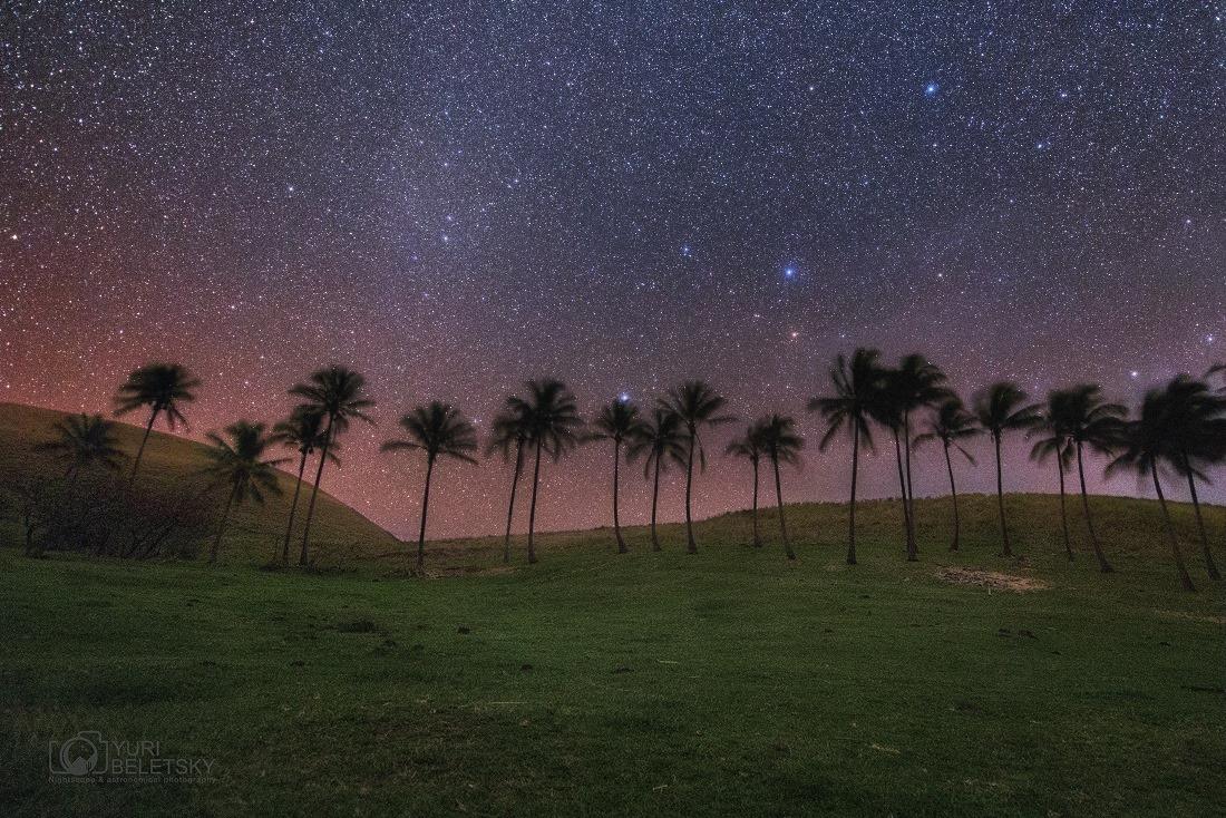 Serena Noche Rapanui