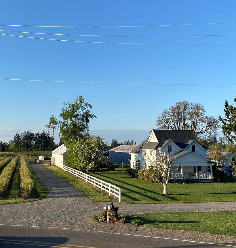 Farm Pic 3.jpg