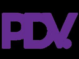 pdv1-05.png