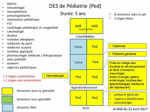 cursus_pediatrie.png