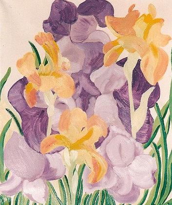 Blue and Yellow Irises - Eliza M. Schmid
