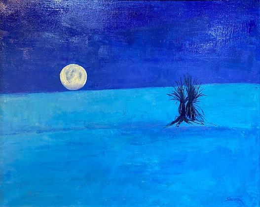 Blue Moonset - Marc Sherson