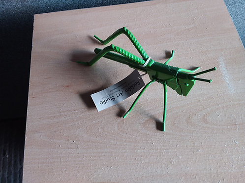 Ah Grasshopper