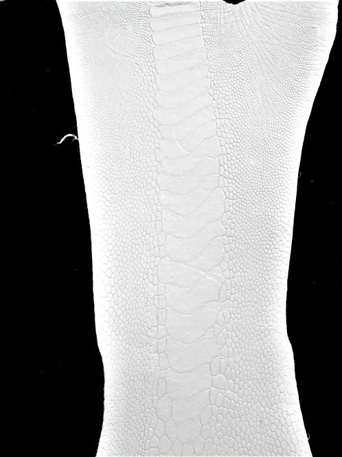 Ostrich Legs Skin Leather White Color