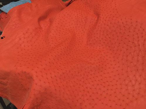 Ostrich Leather Hide, Paprika Color