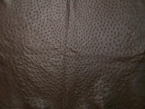 Ostrich Leather Hide, Nicotine Brown Color