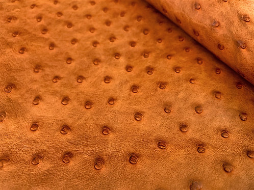 Ostrich Leather Hide, Chestnut (maddog) Color