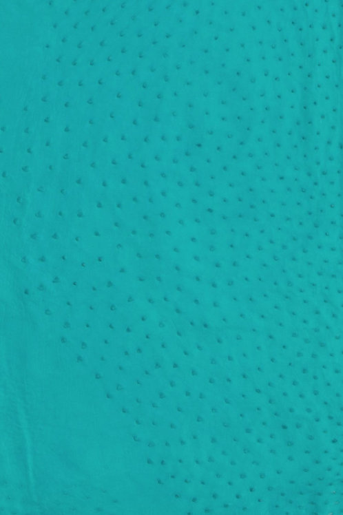 Ostrich Leather Hide, Turquoise Color