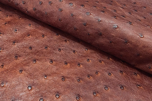 Ostrich Leather Hide, dark Orange (maddog) Color
