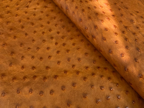 Ostrich Leather Hide, Maddog Brandy Color