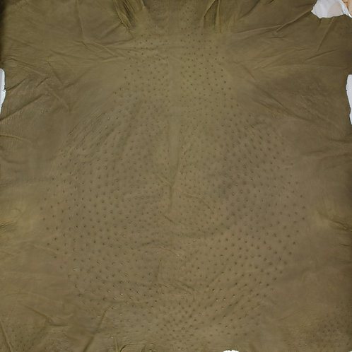 Ostrich Leather Hide, Olive Green Color