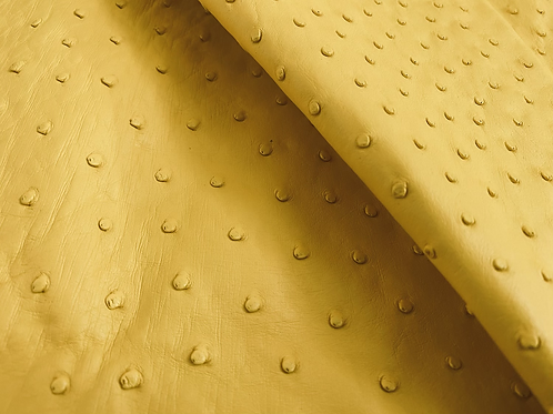 Ostrich Leather Hide, Yellow Color