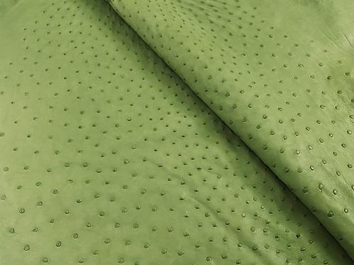Ostrich Leather Hide, Linden Green Color