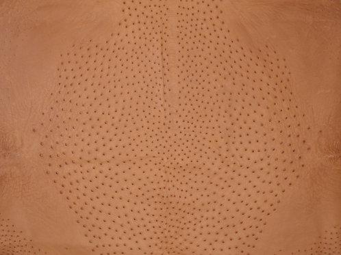 Ostrich Leather Hide, Tobac Color