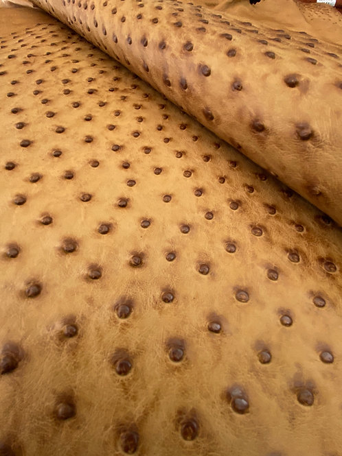 Ostrich Leather Hide, Rio Umber Color