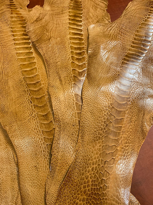 10 Ostrich Legs Skin Leather Antique Saddle Color Grade B in one bundle