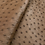 Thumbnail: Ostrich Leather Hide, Pecan Brown Color
