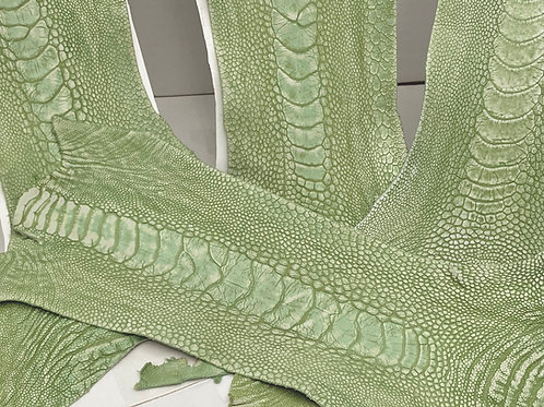 Ostrich Legs Skin Leather Linden Green Color