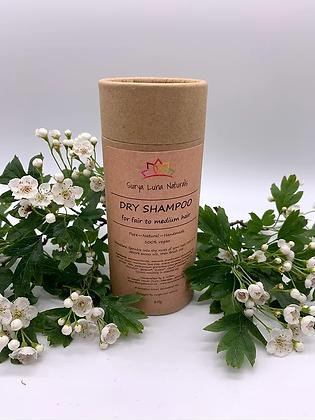 Dry shampoo for fair to medium hair in cardboard shaker tube