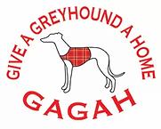 gagah logo.webp