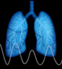 Respirator Motion iNc.png