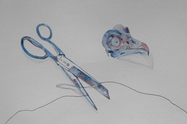 Scissors and Owl Skull