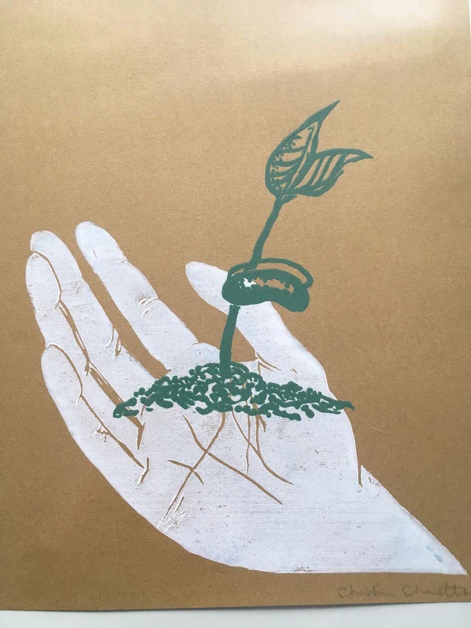 We Grow We Feed