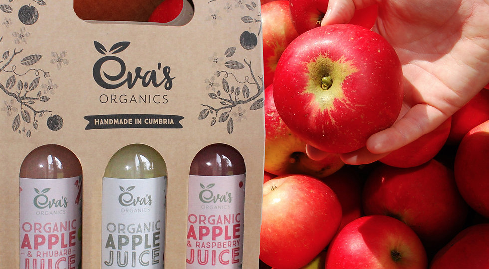 Eva's Organics Juice Gift Box