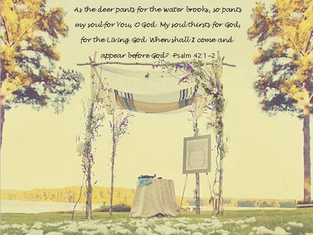 As the Pendulum Swings