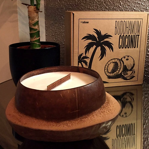 Buddhamum VERY big Coconut Doğal Soya Mum
