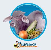 Veterinaria Liberia Guanacaste.jpg