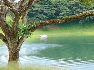 Tour Arenal Lake.jpg