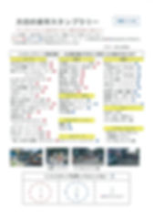 scan-1009.jpg