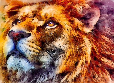 Sol em Leão