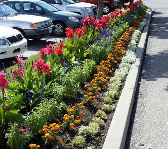 Flowerbed design and planing