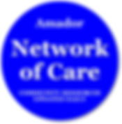 Network of Care graphic.jpg