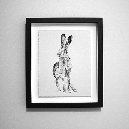 Hare Sketch Print
