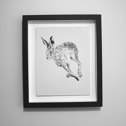 Running Hare Sketch Print