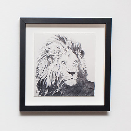 Lion Sketch Print
