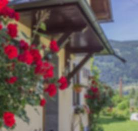 Haus mit blühenden Roen
