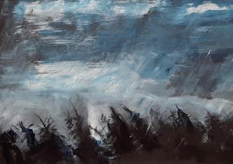 Sturm über dem Nadelwald