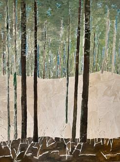 Waldstück im Winter