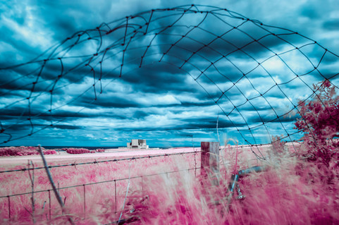 Infrared_Projects_06_Edit.jpg